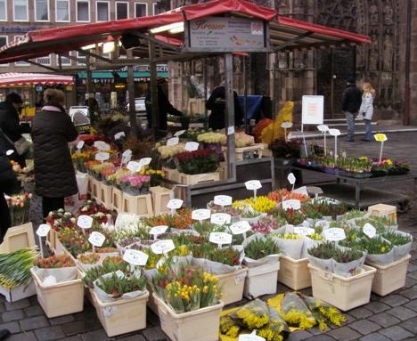 wiosenne kwiaty na rynku w Norymberdze