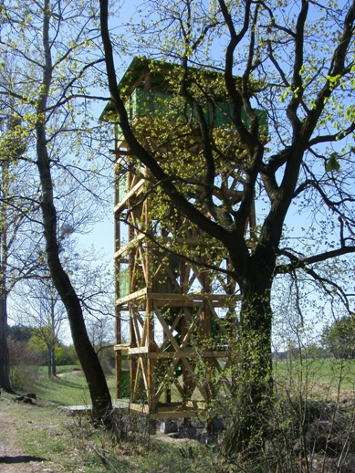 Wieża widokowa na Szlaku Bobrowym
