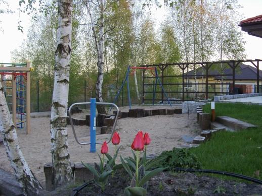 """Tulipany """"Czerwony Kapturek"""" w naszym ogrodzie"""