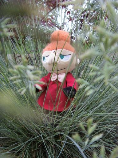 Mała Mi wśród traw