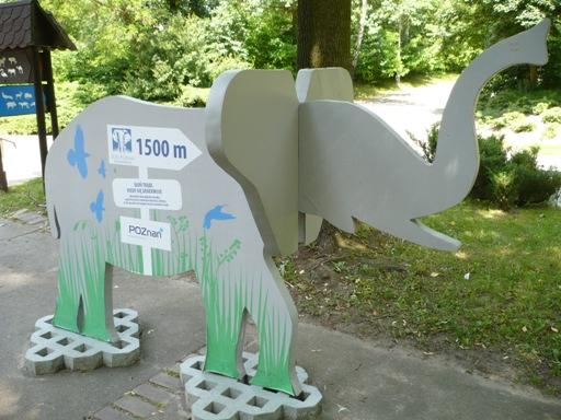 Słoń zaprasza do słoniarni