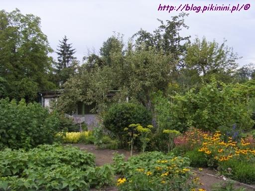Ogródki działkowe Bielniki