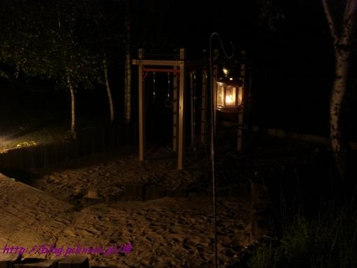 Sierpniowa noc w ogrodzie