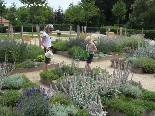Ogród ziołowy w Valticach
