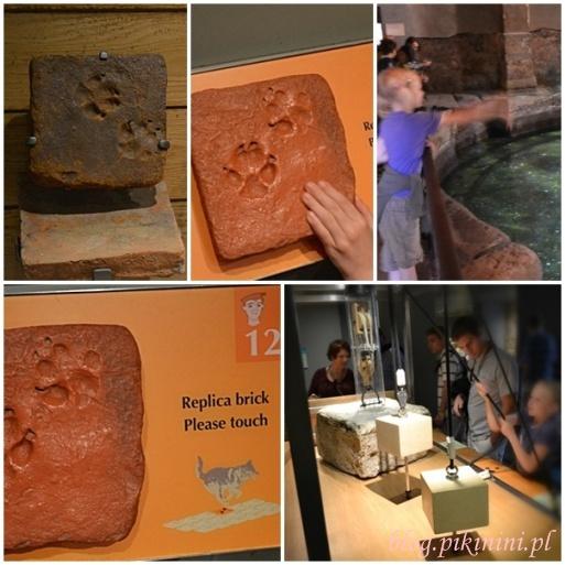 Muzeum rzymskich łaźni w Bath