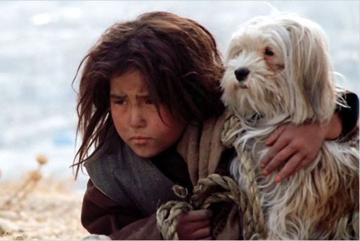 Bezpańskie psy - kadr z filmu 2