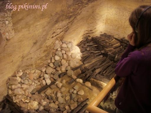 Rezerwat archeologiczny Genius loci w Poznaniu