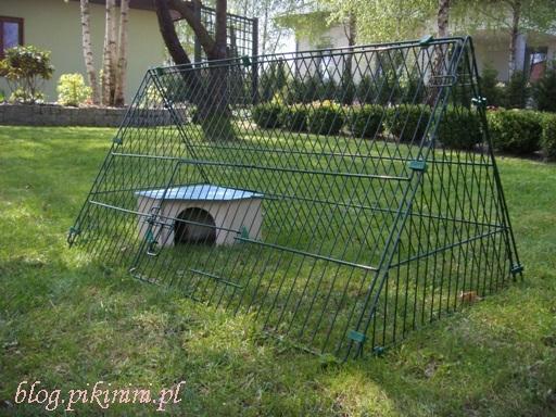 Klatka ogrodowa dla świnki morskiej