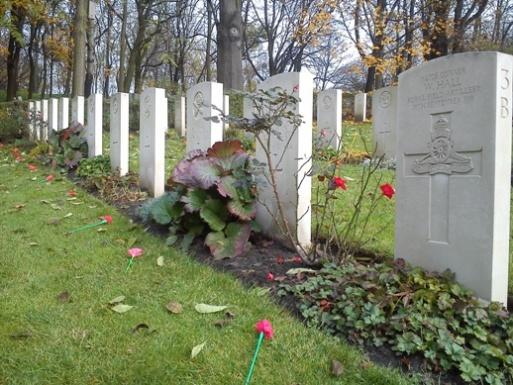 cmentarz brytyjski na cytadeli