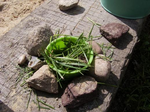 Śniadanko dla ślimaków