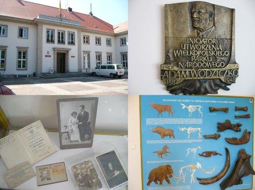 Muzeum Przyrodnicze w Jeziorach