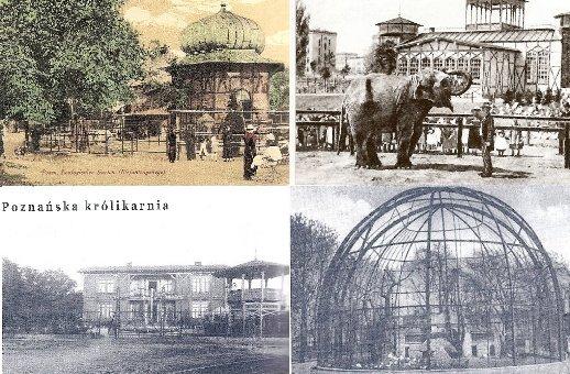 Stare zoo