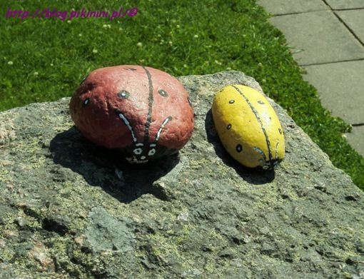 Kamienie z Bullerbyn