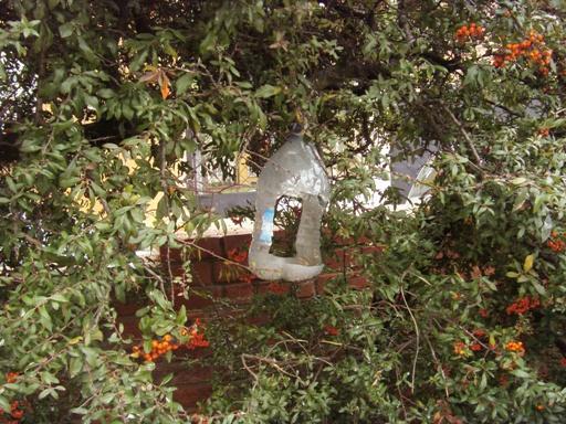 Ekologiczny karmnik dla ptaków