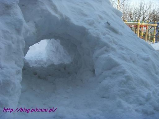 Śniegowy tunel w naszym ogrodzie