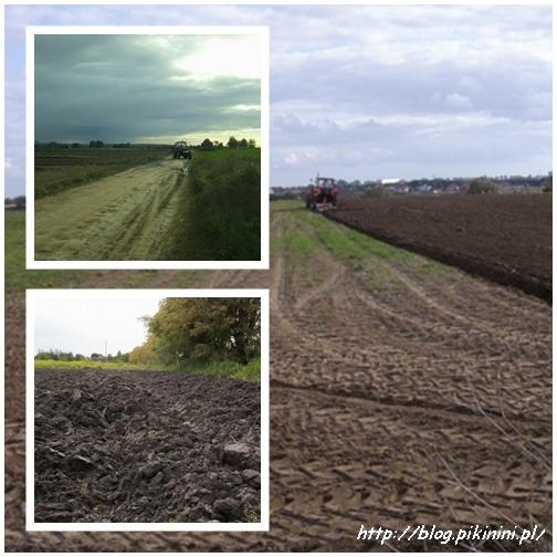 Traktory na polach