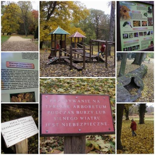 Park w Kórniku