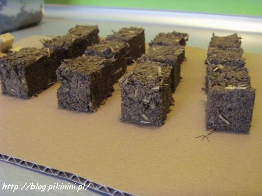 Eko cegiełki z gliny i słomy