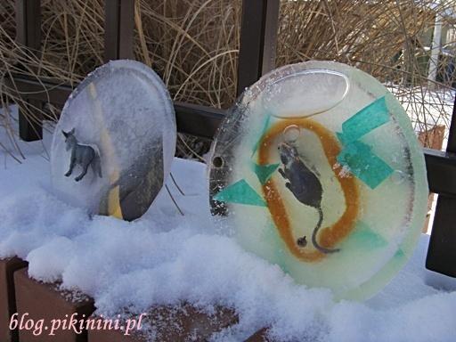 Myszka i osiołek w lodzie