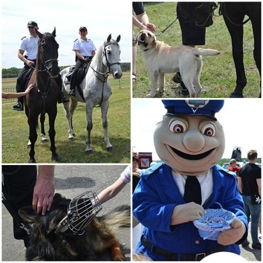 Policyjne służby specjalne
