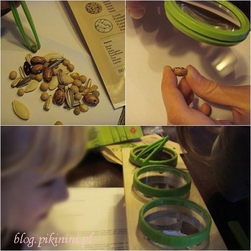 Green factory Navir - Nasiona