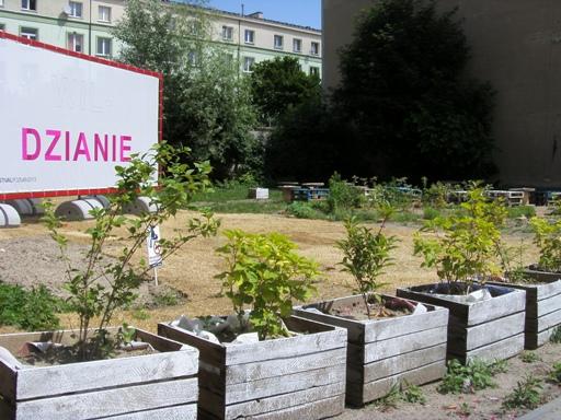Ogródek na ulicy Fabrycznej