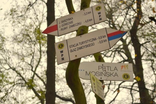 Trasy Wielkopolskiego Parku Narodowego