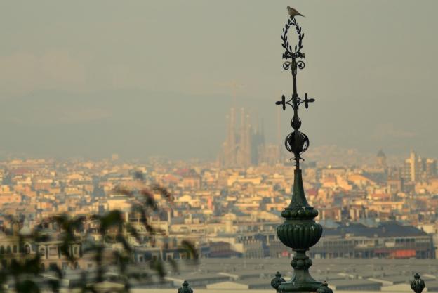 Barcelona z Montjuïc