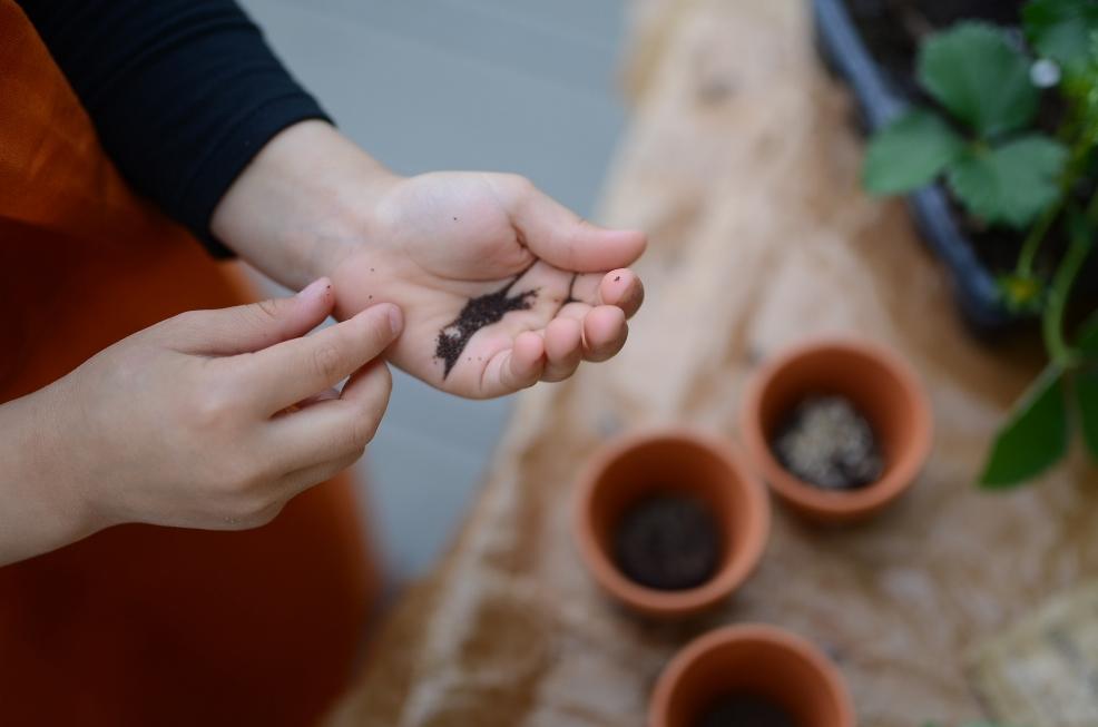 Zestaw dla małego ogrodnika