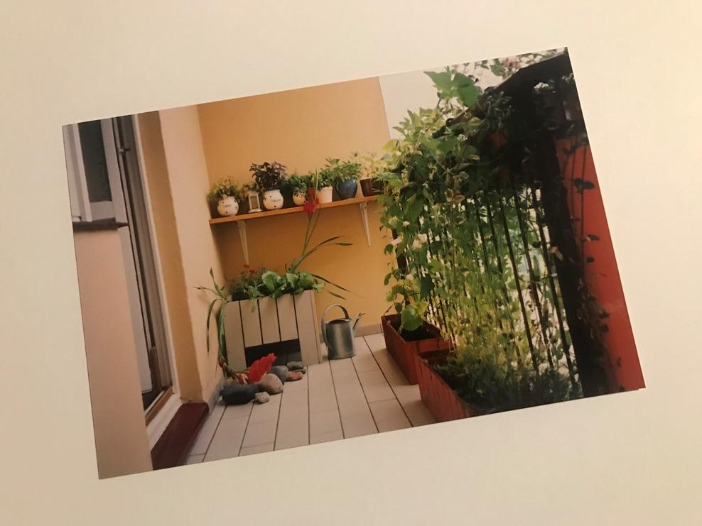 Balkon z ziołami