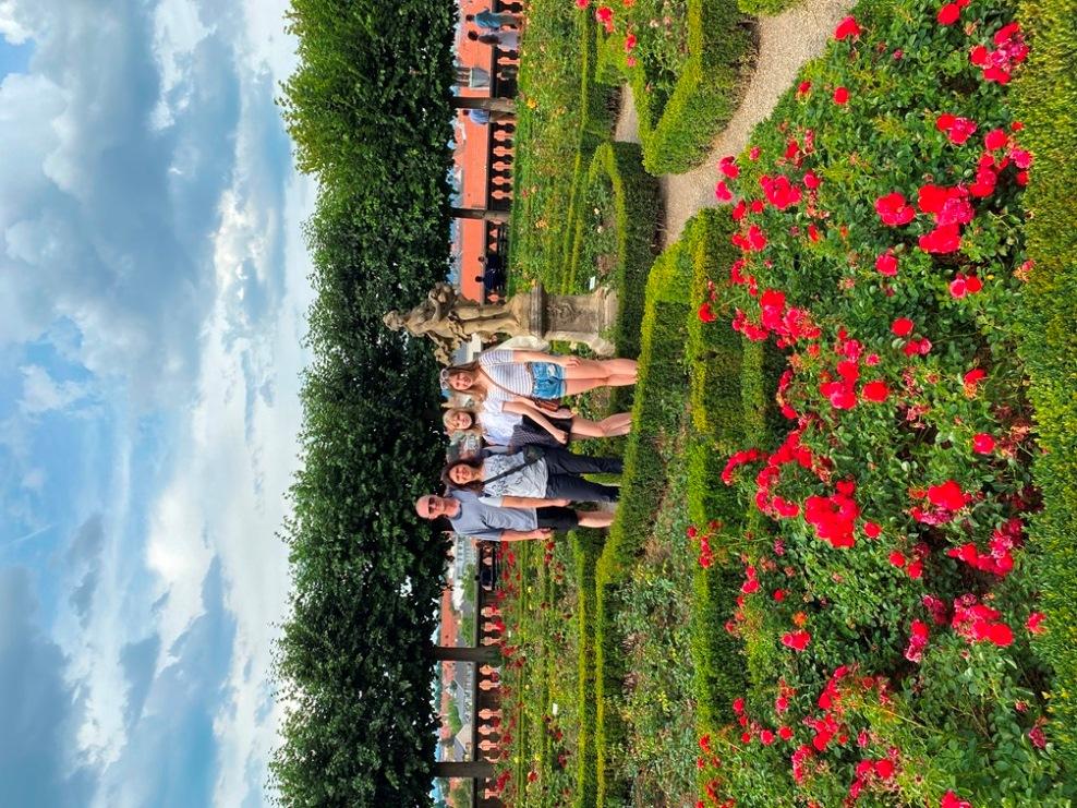 Ogrody różane w Bambergu